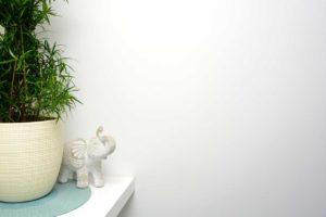 Foto Pflanze und Elefant