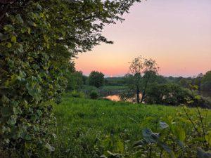Foto Natur am Eidersee
